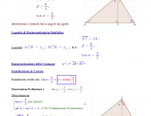 Trigonometria / Th. Fondamentali Triangoli Rettangoli (Ex. Q119.072)  – Articolo Doppio –