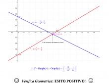 Sistemi Lineari Risolti con il Metodo di Riduzione  (090)